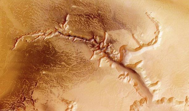 صور من سطح الكوكب الأحمر