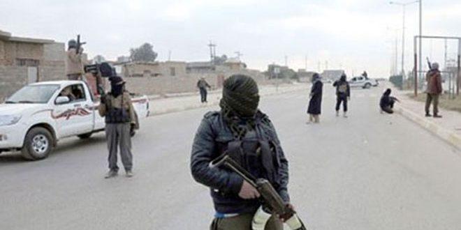 (تحالف واشنطن) ومرتزقته ينقلون إرهابيي داعش من الرقة إلى مناطق الاشتباك مع الجيش في دير الزور