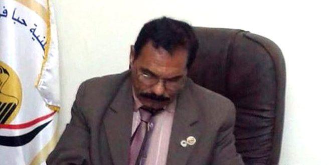 سياسي مصري: وحدة الأراضي السورية أمر لا جدال فيه