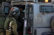 الاحتلال الإسرائيلي يعتقل 11 فلسطينيا في الضفة الغربية